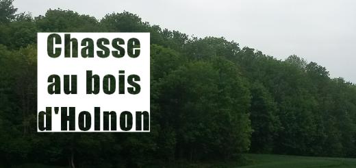 Chasse au bois d'Holnon