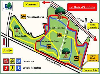 Plan du bois d'Holnon (partie communale)